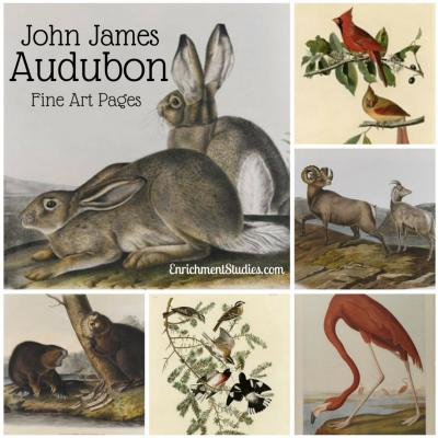 John James Audubon Fine Art Pages