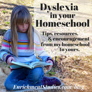 Dyslexia in your homeschool